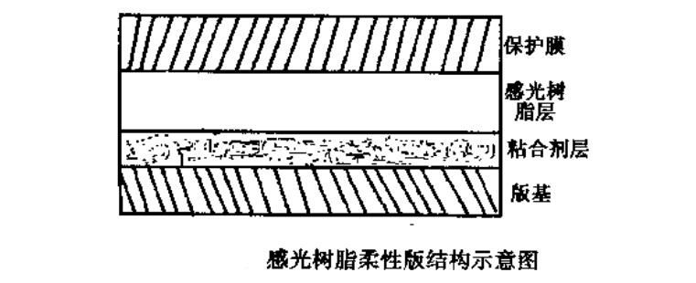 感光树脂版的结构示意图