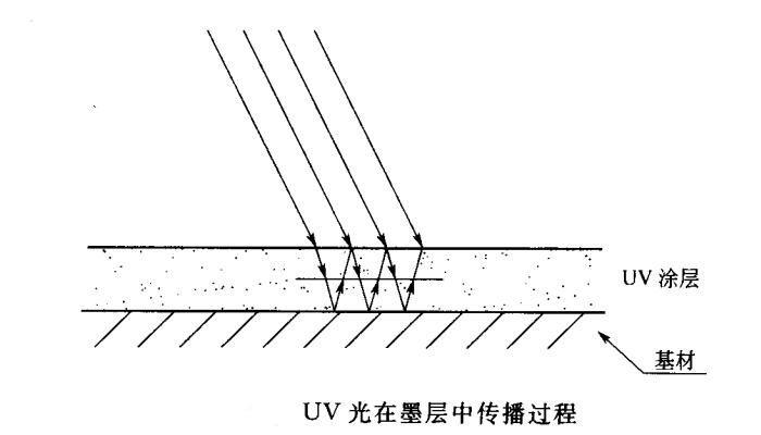uv光在墨层传播过程